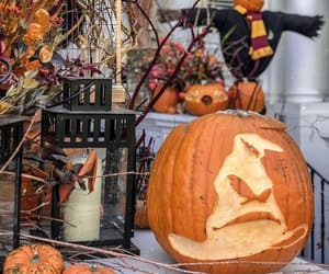 decoration, Halloween, and harry potter image