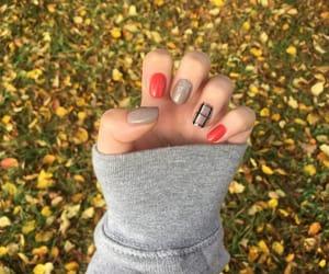 autumn, cozy, and plaid image