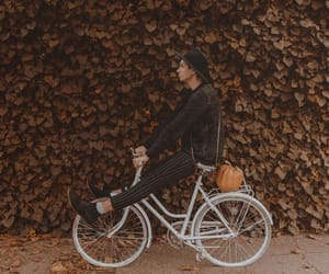 adventure, autumn, and bicycle image