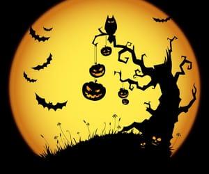 Halloween, pumpkin, and tree image