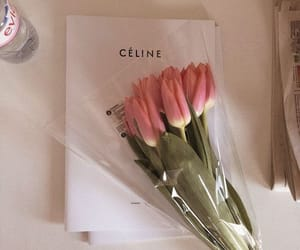 aesthetic, flowers, and celine image