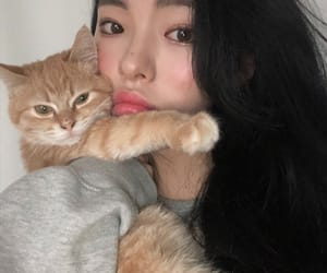 cat, korean, and girl image