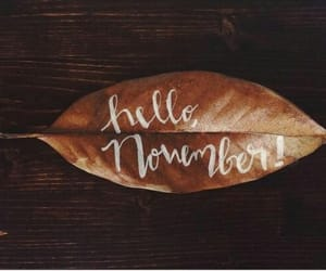 hello, leaves, and november image