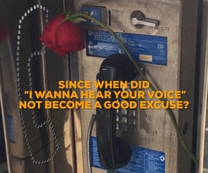 grunge, quotes, and rose image