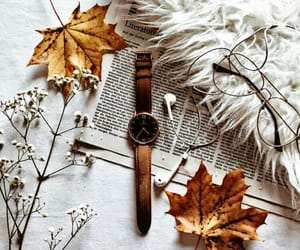 fall, autumn, and watch image