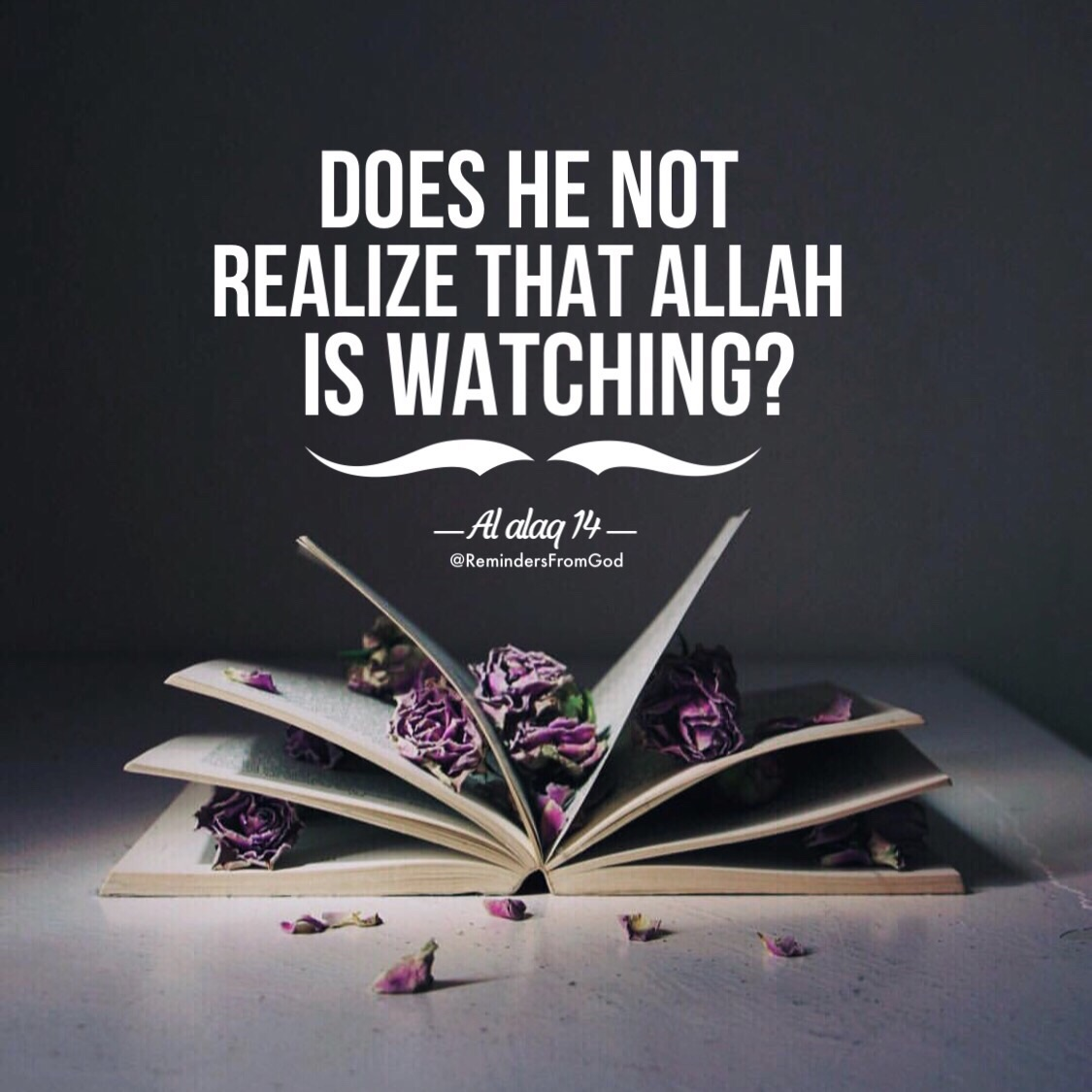 Image About Quotes In Islamic By Batoul Aboutaam