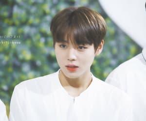 jihoon, korean, and kpop image