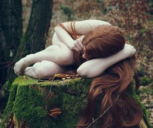 forest and redhead image