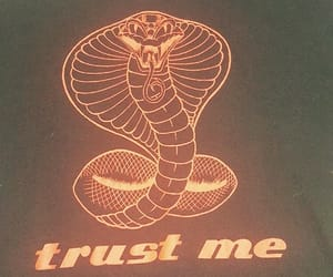 snake, grunge, and quotes image