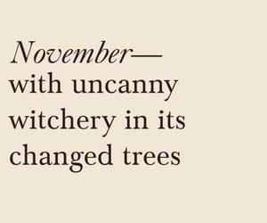 november, autumn, and books image