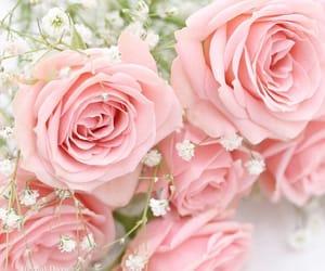 bouquet, elegance, and elegant image