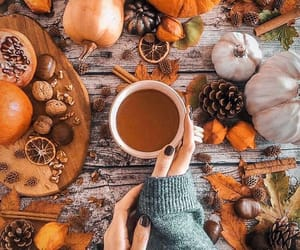 autumn, Cinnamon, and drink image