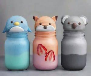dolphin, fox, and Koala image