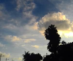 clouds, palmtrees, and photography image
