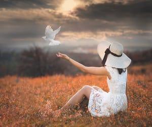 dark sky, meadow, and white dress image