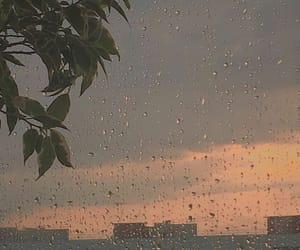 aesthetic, rain, and rainy image