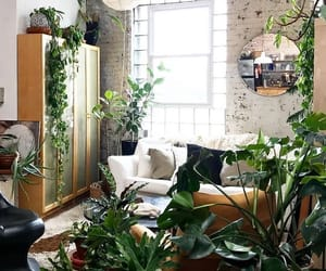 garden, interior design, and plants image