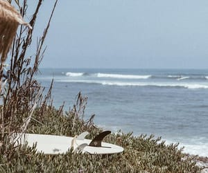 board, lifestyle, and ocean image