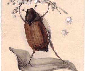 bug, etsy, and flower image