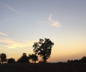 autumn, sunrise, and freedom image