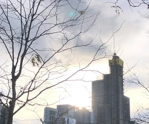 chicago, windy city, and skyline image