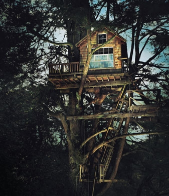tree and tree house image
