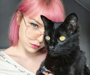 black cat, cat, and colored hair image