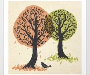autumn, bird, and forest image