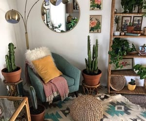 cactus, livingroom, and indian image