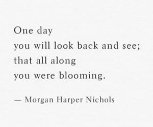 blooming, all along, and are image
