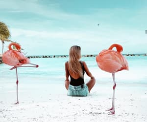 beach, fashion, and luxury image