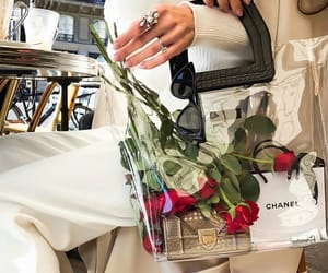 bag, chanel, and rose image