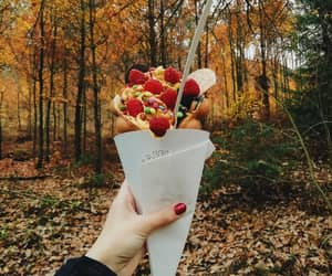 autumn, blogger, and food porn image