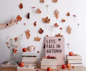 fall and autumn image