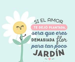 amor, humor, and actitud image