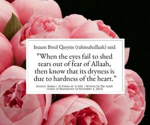 Iman, islam, and sunnah image