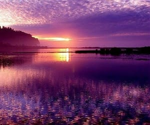 purple, nature, and sunset image