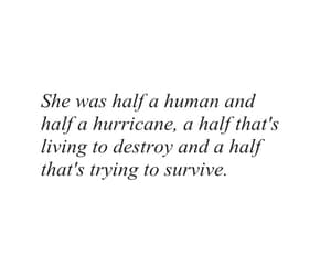 quote, survive, and destroy image