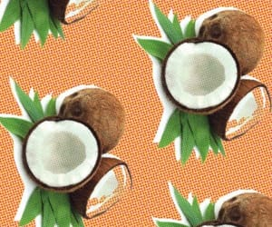 coconut, coconuts, and tropical image