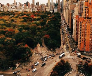 autumn, inspiration, and new york image
