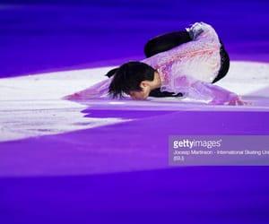 athlete, goat, and ice skating image