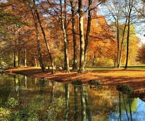 autumn, bavaria, and english image