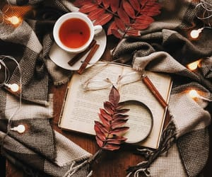 autumn, book, and cozy image