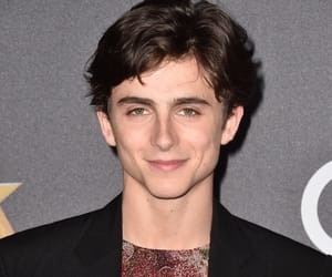 timmy, hollywood film awards, and timothee chalamet image