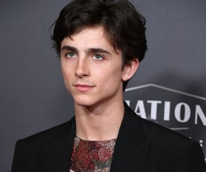timothee chalamet, beautiful boy, and timmy image