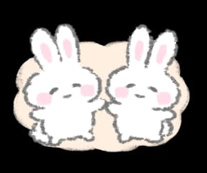 bunny, png, and soft image