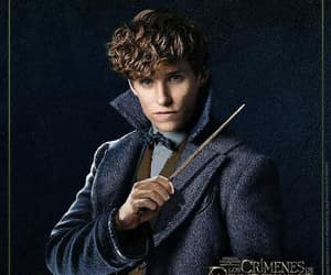 eddie, newt, and fantastic beasts image