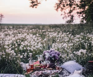 nature, flowers, and picnic image