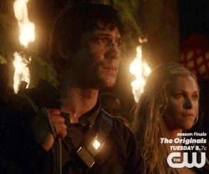 gif, love, and bellarke image