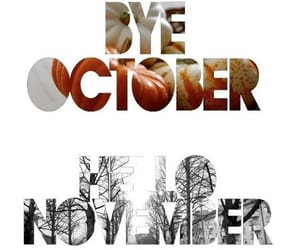autumn, cold, and november image
